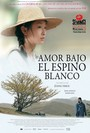 Amor bajo el espino blanco (under the hawthorn tree)