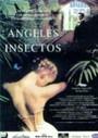 Ángeles e insectos