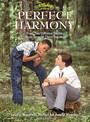 Armonía perfecta
