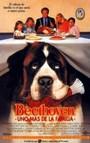 Beethoven, uno mas en la familia