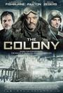 Colonia 5