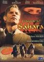 El secreto del sahara