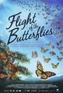 El vuelo de las monarca