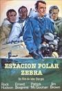 Estaci�n polar cebra