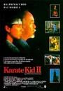 Karate kid 2: la historia continúa