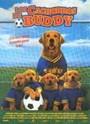 Los Cachorros de Buddy