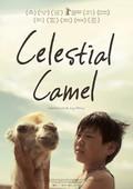 Nebesnyy verblyud (Celestial Camel)