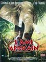 perdidos en África