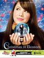 Prejas Cruzadas (Christmas in Boston) (TV)