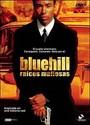 raíces mafiosas bluehill