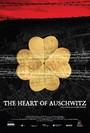 The heart of auschwitz