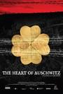 The heart of auschwitz