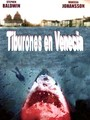 Tiburones en Venecia