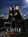 Ver Serie Castle