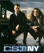 Ver Serie CSI: New York