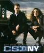 Ver Serie CSI: New York