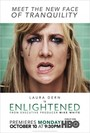 Ver Serie Enlightened