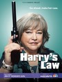 Ver Serie Harry's law