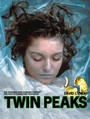 Ver Serie Twin Peaks