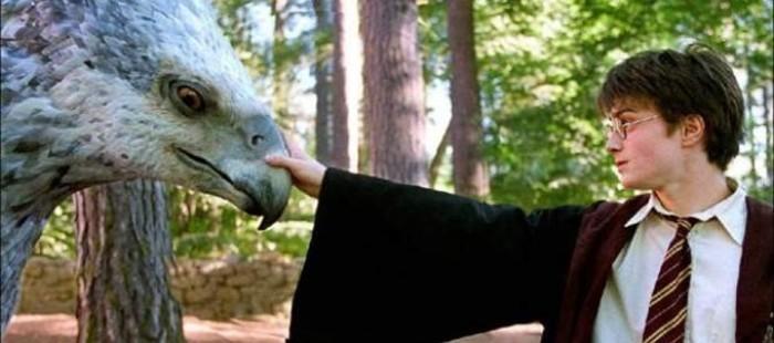 Warner confirma que el spin-off de Harry Potter ser� una trilog�a