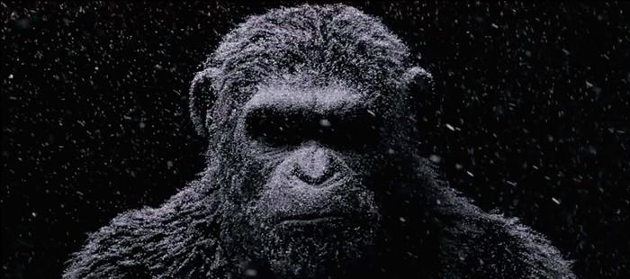 La Guerra del Planeta de los Simios: También lidera la taquilla de cine en España en su estreno